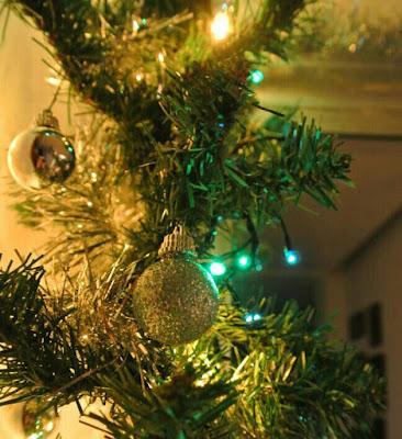 Il mio albero di Tiwa