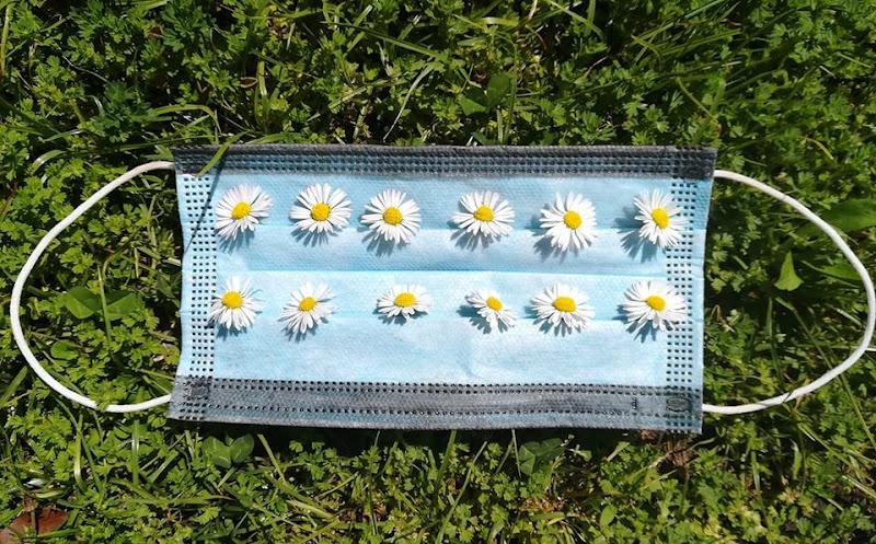 strana primavera di luisa_navalesi