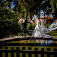 Wedding photographer Rafael Palacio (palacio). Photo of 19.12.2014