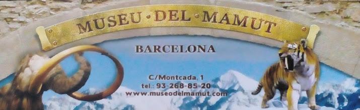 Photo: 34 Museo