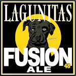 Lagunitas Fusion 48