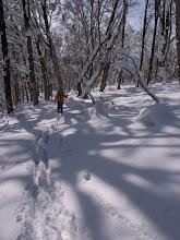 Photo: ☆新雪は20cmほど