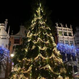 świątecznie by Kazimierz Sakowicz - City,  Street & Park  Night (  )