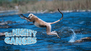 The Mighty Ganges thumbnail