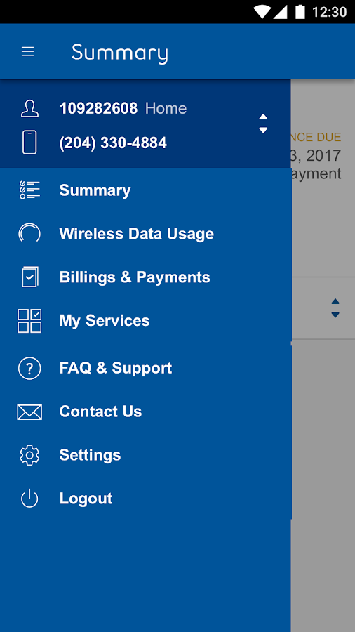Bell Mts Home Services