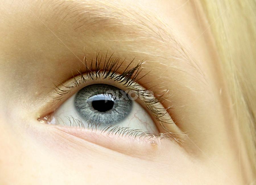 Blue Eye by Susan Farris - People Body Parts ( macro, female, blue, blond, eye, , eyes, beauty )