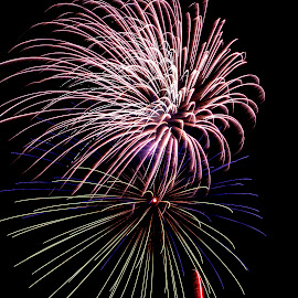 Fireworks in the Adirondacks by Debbie Quick - Public Holidays July 4th ( debbie quick, adirondacks, night, fireworks, 4th of july, debs creative images, new york, explosion, independence day, july 4th, hague, july fourth, event, fourth of july, colorful )