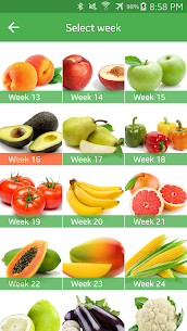 Pregnancy Week By Week Mod Apk (Full Unlocked + No Ads) 7