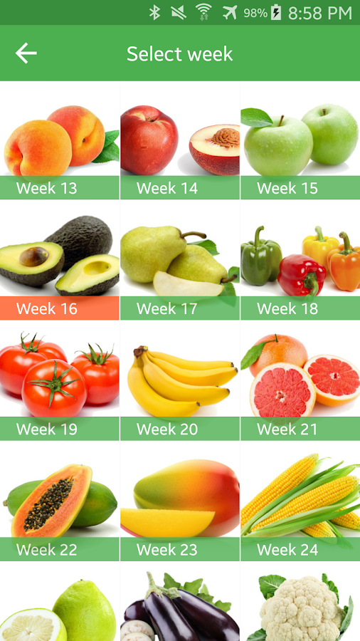 Pregnancy Week By Week- screenshot