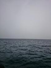Photo: ・・・雨が降ってきました。