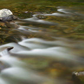 by Amy Spurgeon - Landscapes Waterscapes