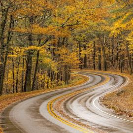 Winding road by Cary Chu - City,  Street & Park  Street Scenes
