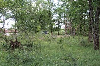 terrain à Carsac-Aillac (24)