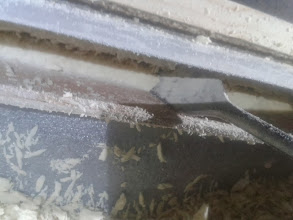 Photo: El listón tiene 21 mm de espesor y es lo que estoy metiendo la pala.