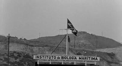 """Photo: O plano de """"O Monstro da Lagoa Negra"""" que mostra a bandeira brasileira e a placa do Instituto de Biologia Marítima. http://filmesclassicos.podbean.com"""