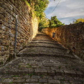 Where The Streets Have No Name by Mara R. Sirako - City,  Street & Park  Historic Districts ( history, cultural heritage, piran, stairs, slovenia, pirano, old city, old town, stone,  )