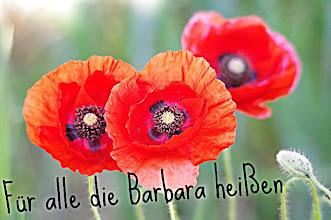 Photo: Barbarazweige .....  Barbarazweige sind Obstbaumzweige, die am 4. Dezember, dem Tag der Heiligen Barbara,  geschnitten und anschließend in warmes Wasser (in der Nähe eines Ofens) gestellt werden.  Deutsch-Bayrisch aus dem Jahr 1950  http://www.youtube.com/watch?v=vPytyfjazyk&feature=colike http://www.surfmusik.de/