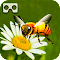VR Brilliant Bee Adventure file APK Free for PC, smart TV Download