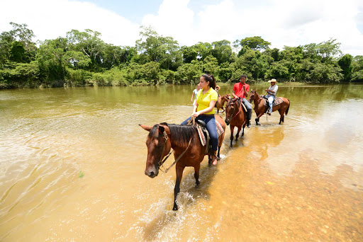 Belize-Horseback-stream.jpg - Horseback riding near the Banana Bank Lodge in Belize.