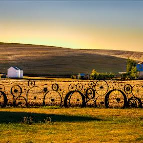 Wheels by Dennis Mai - Landscapes Prairies, Meadows & Fields
