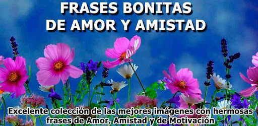 Frases Bonitas De Amor Para Enamorar Y Amistad Apps On Google Play