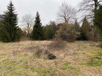 terrain à Seloncourt (25)