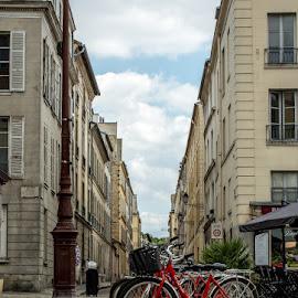 Bike Paris St. Louis by T Sco - City,  Street & Park  Street Scenes ( bricks, wheels, paris, cafe, bicycle, st louis, france, bike )