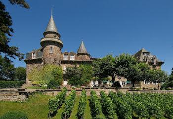 château à Brive-la-Gaillarde (19)