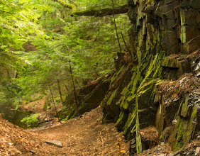 Photo: Cliffs rise up from a forest trail at Fort Dummer State Park