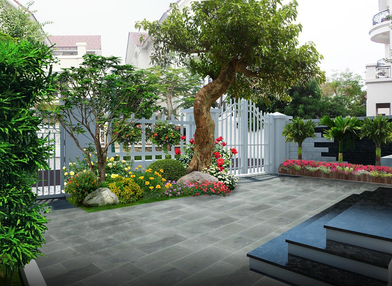 Giá thành trồng cây ở Tây Ninh không hề đắt