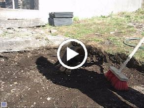 Video: VIDEO: Ayla leker med feiekosten 9 uker