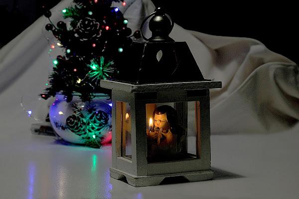 La magia del Natale. di Naldina Fornasari
