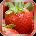 Strawberry Live Wallpaper v1.1