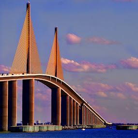 Sky Way Bridge by Colleen Rohrbaugh - Buildings & Architecture Bridges & Suspended Structures ( bridges travel, architecture, design,  )