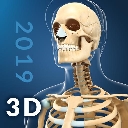 Baixar My Skeleton Anatomy para Android