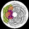 Mandala: Adult Coloring Books