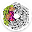 Mandala: Adult Coloring Books APK