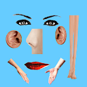 Body Parts - Basic icon