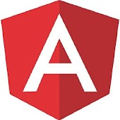 AngularJS : Pocket Guide