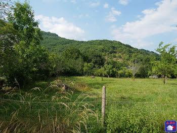 terrain à Castillon-en-Couserans (09)