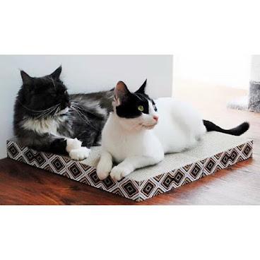 四合一貓抓板