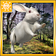 Wild Rabbit Simulator 3D (game)