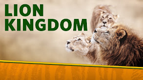 Lion Kingdom thumbnail