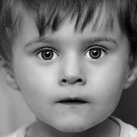 Hmm by Amy Hawker - Babies & Children Toddlers ( child, sharp, black and white, boy, portrait )