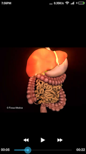 Gastroenterology-Medical Dict.- screenshot thumbnail