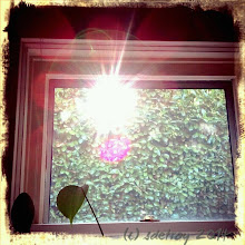 Photo: Grateful for how the sun moves into the window in the fall.