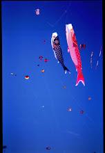Photo: Kitefestival ,Wildwood ,USA 1992
