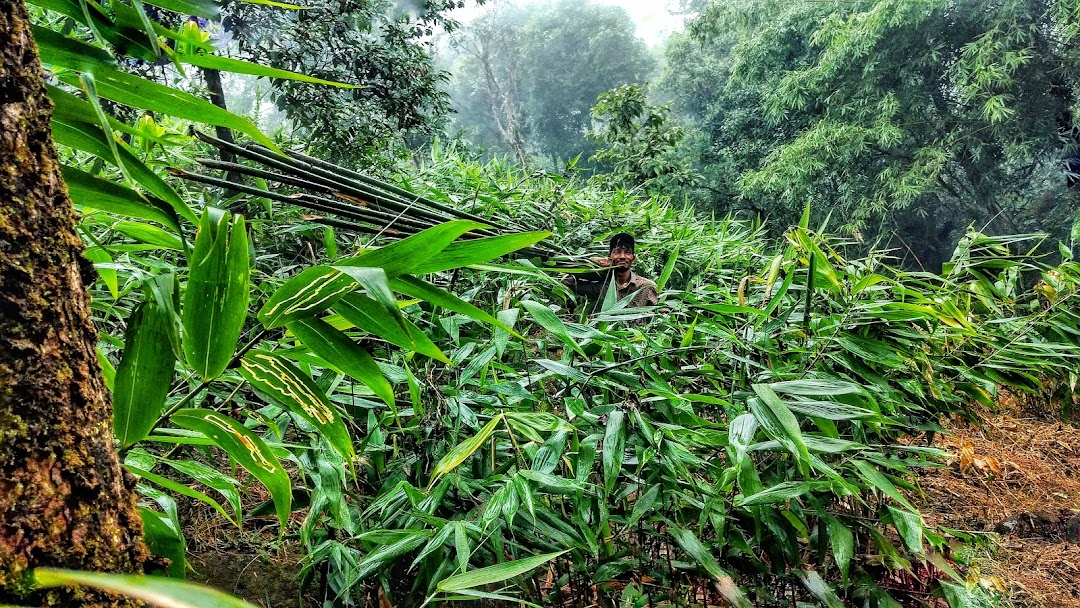 A bamboo farmer with his produce