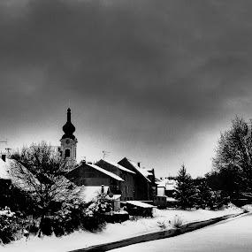 Valpovo by Alen Zita - Black & White Buildings & Architecture ( valpovo, winter, black and white, snow, croatia )