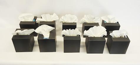 Photo: AH CHOO 1-10 - 8H X 8W X 5D Each, Hot Rolled Mild Steel, Facial Tissue